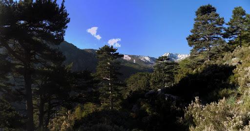 Sur le chemin avec le massif de l'Incudine en vue