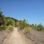 track up to the Lower Sea Eagle Lookout (402727)