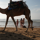 Essaouira jour2