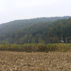 2012 24 octombrie 006.jpg