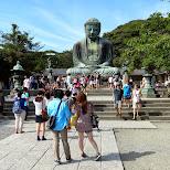 the giant Daibutsu in Japan in Kamakura, Kanagawa, Japan