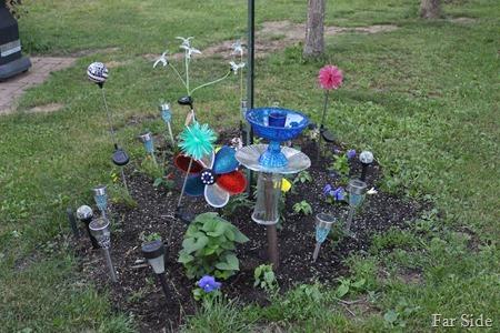 garden June 8