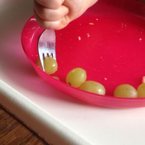 Der Knuddelkäfer spießt Weintrauben auf die Gabel