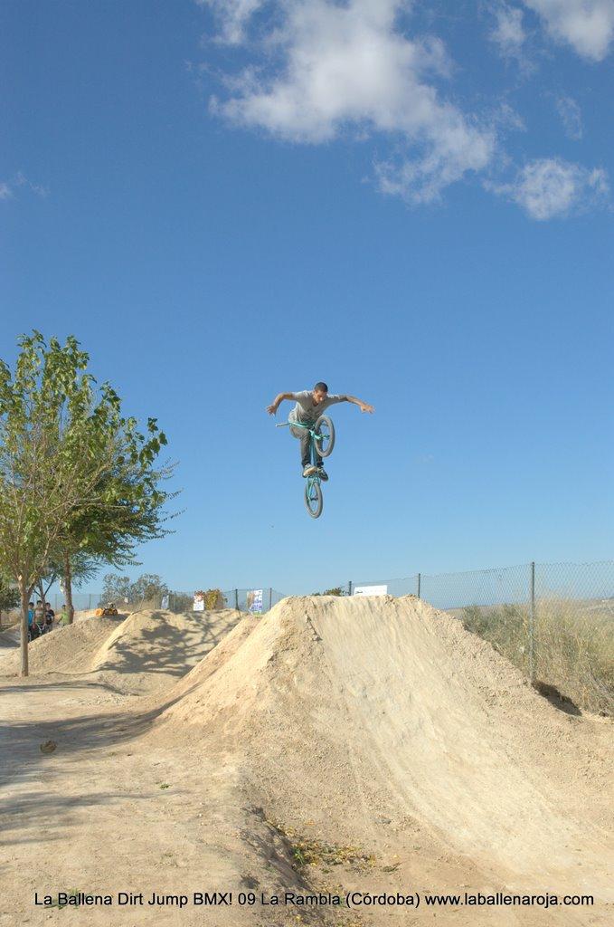 Ballena Dirt Jump BMX 2009 - BMX_09_0028.jpg
