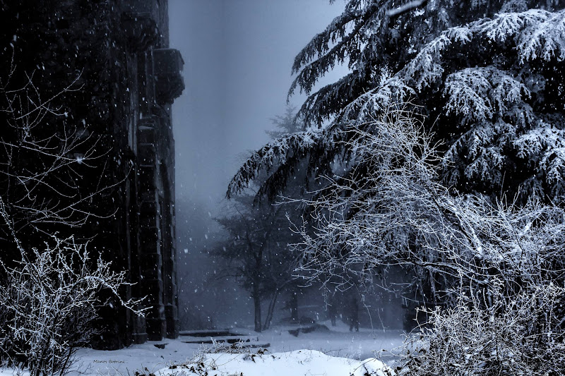Три холодных дня: фото 3