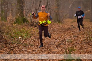 november run bistrita2.jpg