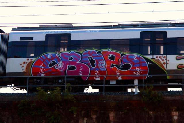 boe (5)