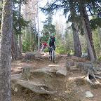 Trail & Technik jagdhof.bike (31).JPG