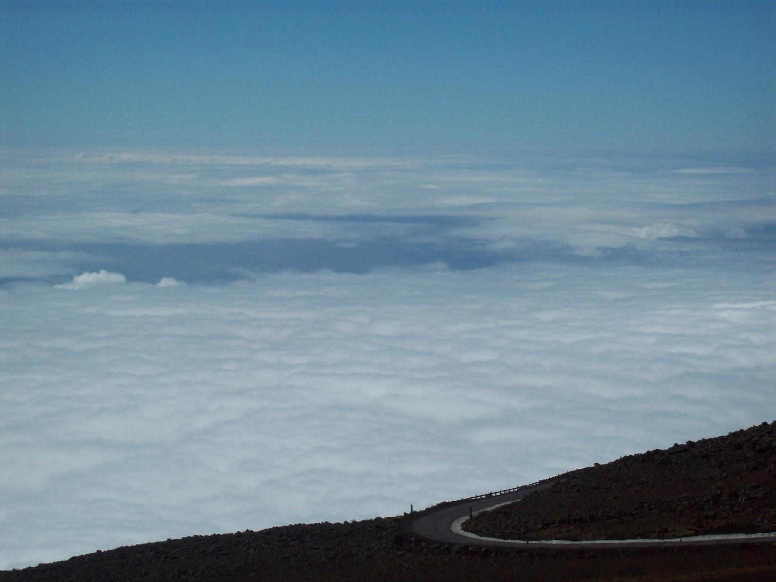 Hawaii Day 8 - 114_2107.JPG