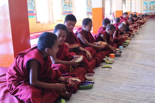 Small monks enjoying food