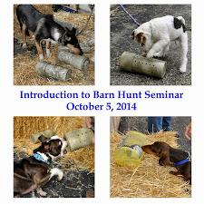 Introduction to Barn Hunt Seminar 10-5-14