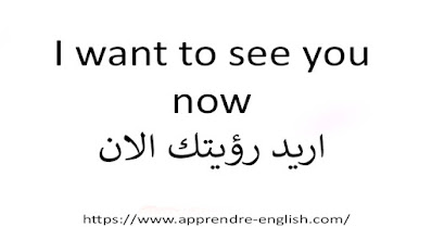 I want to see you now اريد رؤيتك الان