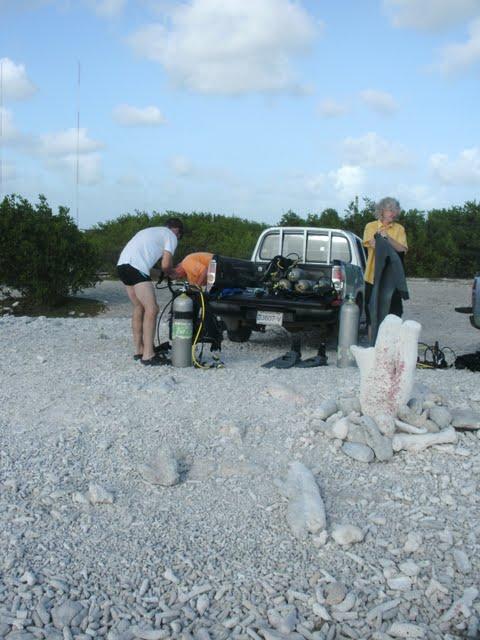 Bonaire 2011 - PICT0088.JPG
