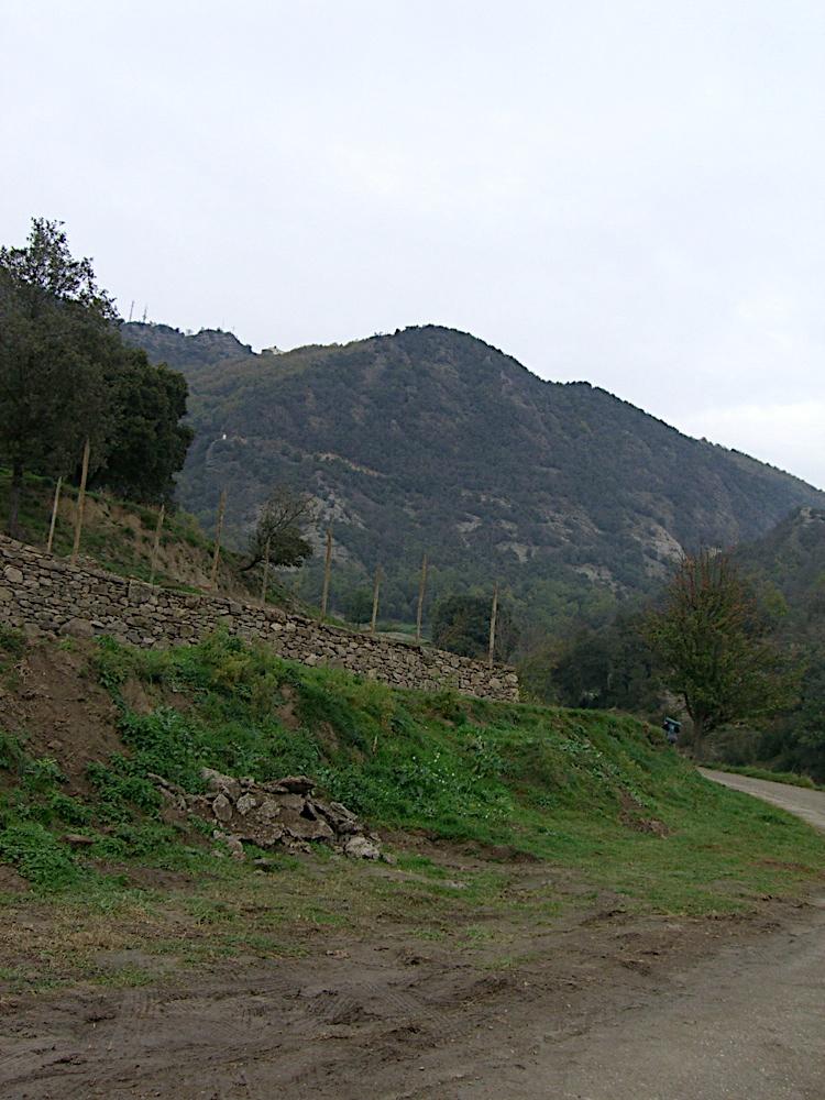 Refugi de Bellmunt 2005 - CIMG4672.jpg