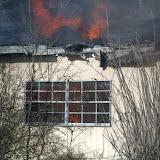 fire 11.jpg
