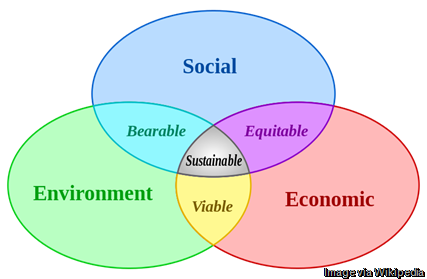 Social-Sustainable-business
