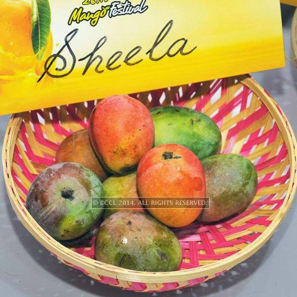 Sheela mango at the 26th Mango Festival, organised by Delhi Tourism at Dilli Haat, Pitampura, Delhi.