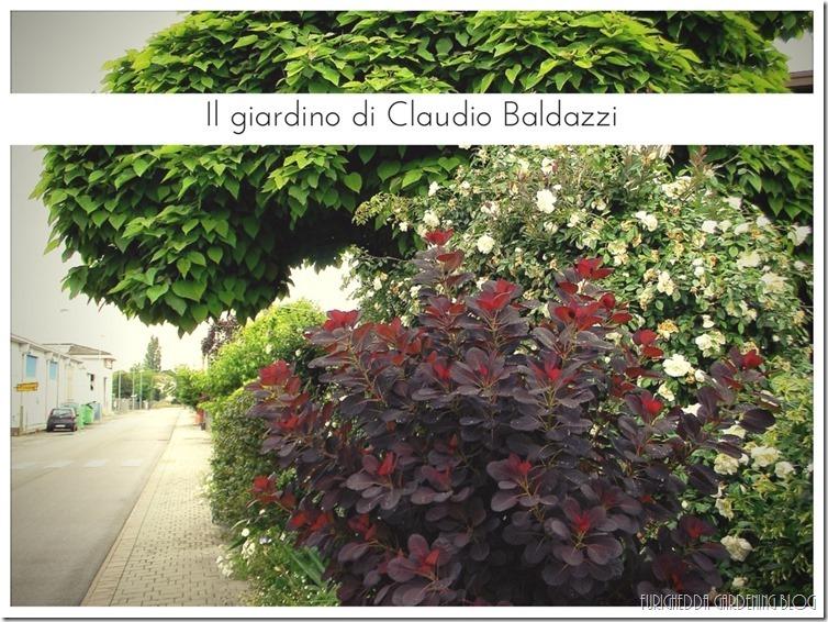 Il giardino di Claudio (4)