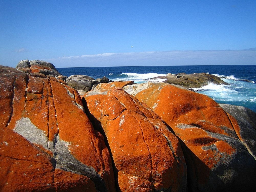bay-of-fires-tasmania-4