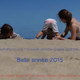 Voeux Moens 2015.png