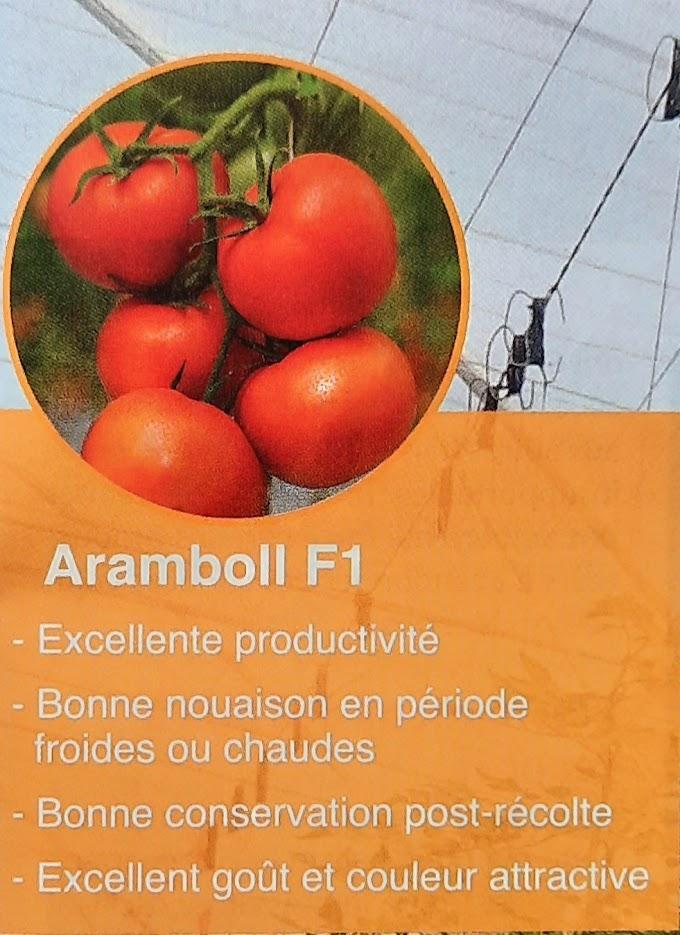 Aramboll