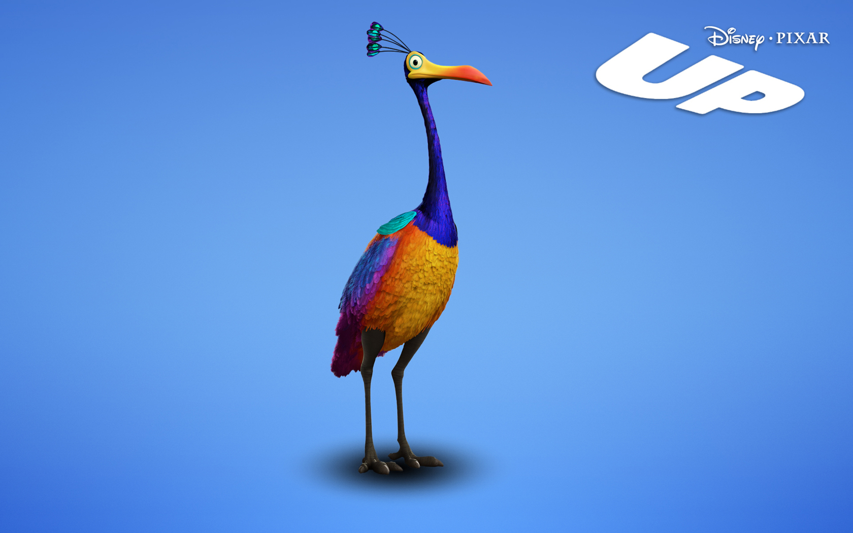 Kevin The Bird From Up The Movie Animals up movie 1680x1050Up Kevin Bird