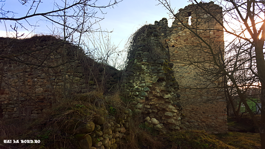 cetatea salasu de sus