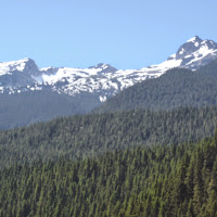 Ross Lake July 2014 - P7080076.JPG