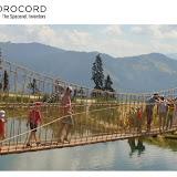 Игровые сетки и мосты Corocord