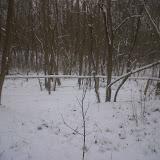 Pol de sneewkabouter