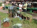 Puesto de venta de hierbas medicinales
