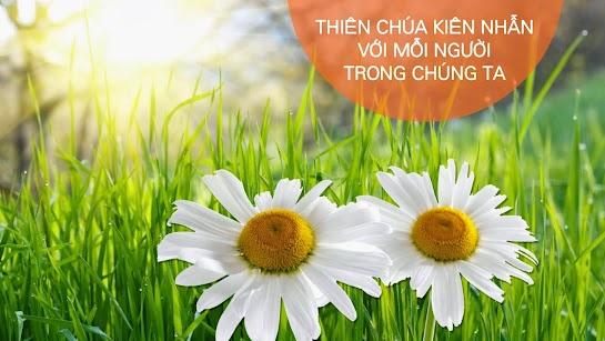 Thiên Chúa nhẫn nại với cỏ dại