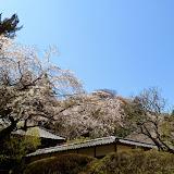 2014 Japan - Dag 7 - tom-SAM_0431-0005.JPG