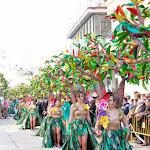 CarnavaldeNavalmoral2015_083.jpg