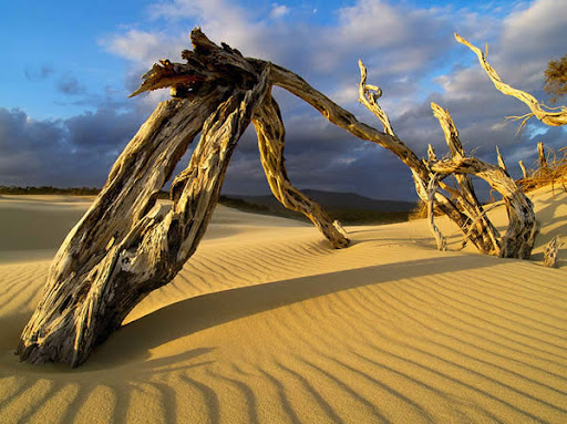 15 Amazing   Examples of Desert Landscape Photography