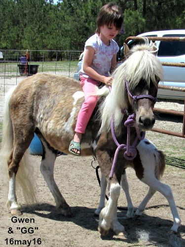 Gwen is riding, sort of, at LP Painted Ponys
