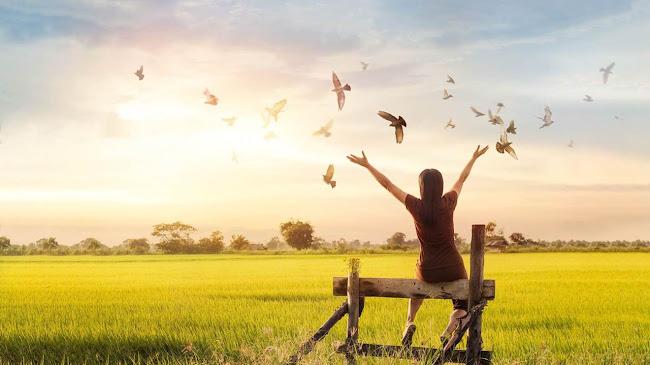 Bài học về tha thứ: sao bạn tự phải mang gánh nặng?