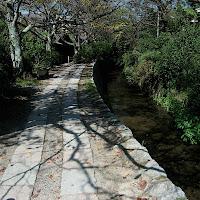 Kyoto: Philosopher