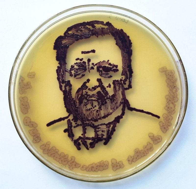 agar-art-contest-8