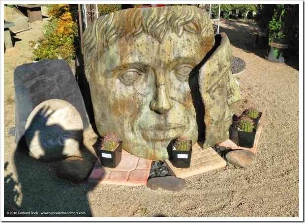 151230_Tucson_Mesquite-Valley-Growers_0064