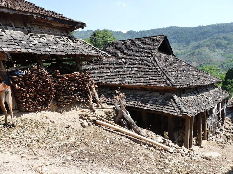 Chine: randonnée xishangbanna, région de Bada - Picture%2B817.jpg