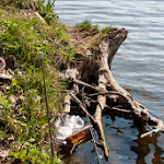 20140503_Fishing_Babyn_019.jpg