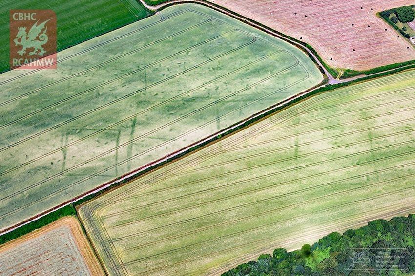 crop-marks-9