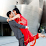 Pooja Chokshi's profile photo
