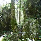 Kamniška Bistrica - S5007701.JPG