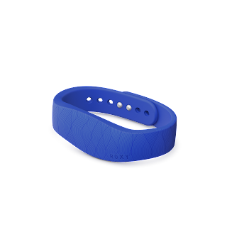 SmartBand with Roxy Product PNG 3.png
