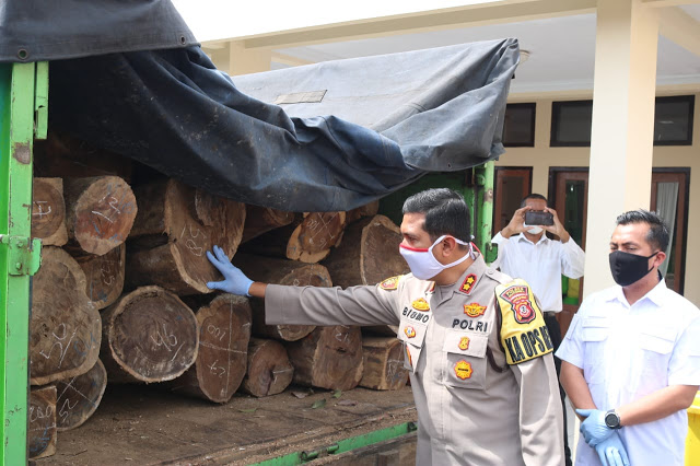 Satreskrim Polres Majalengka Polda Jabar Amankan Pelaku ILegal Logging