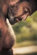 Sexy Hairy Chested Daddy Bear Hunks
