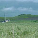 Aleutian Islands and Alaska Peninsula miscellaneous