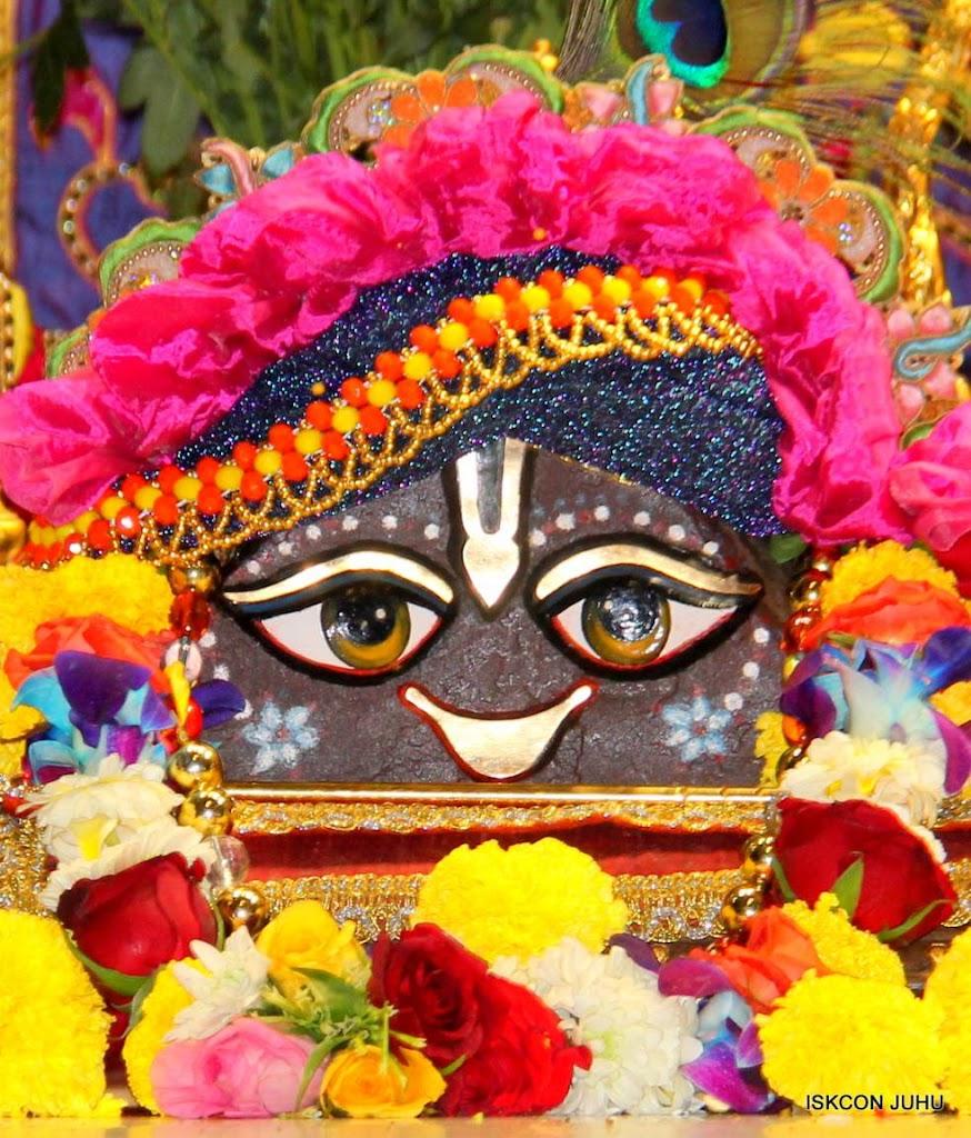 ISKCON Juhu Sringar Deity Darshan 29 Jan 2016 (10)